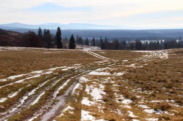 Medvekaland a havason - Erdélyi képek