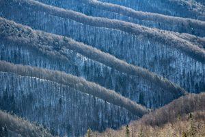 Téli hullámzó dombok