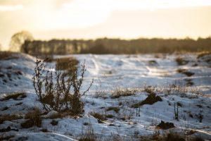 Napfény és hó a Kalondatetőn
