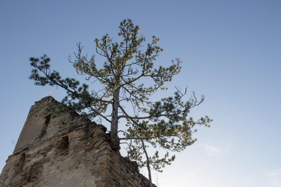 Fa a vár tetején