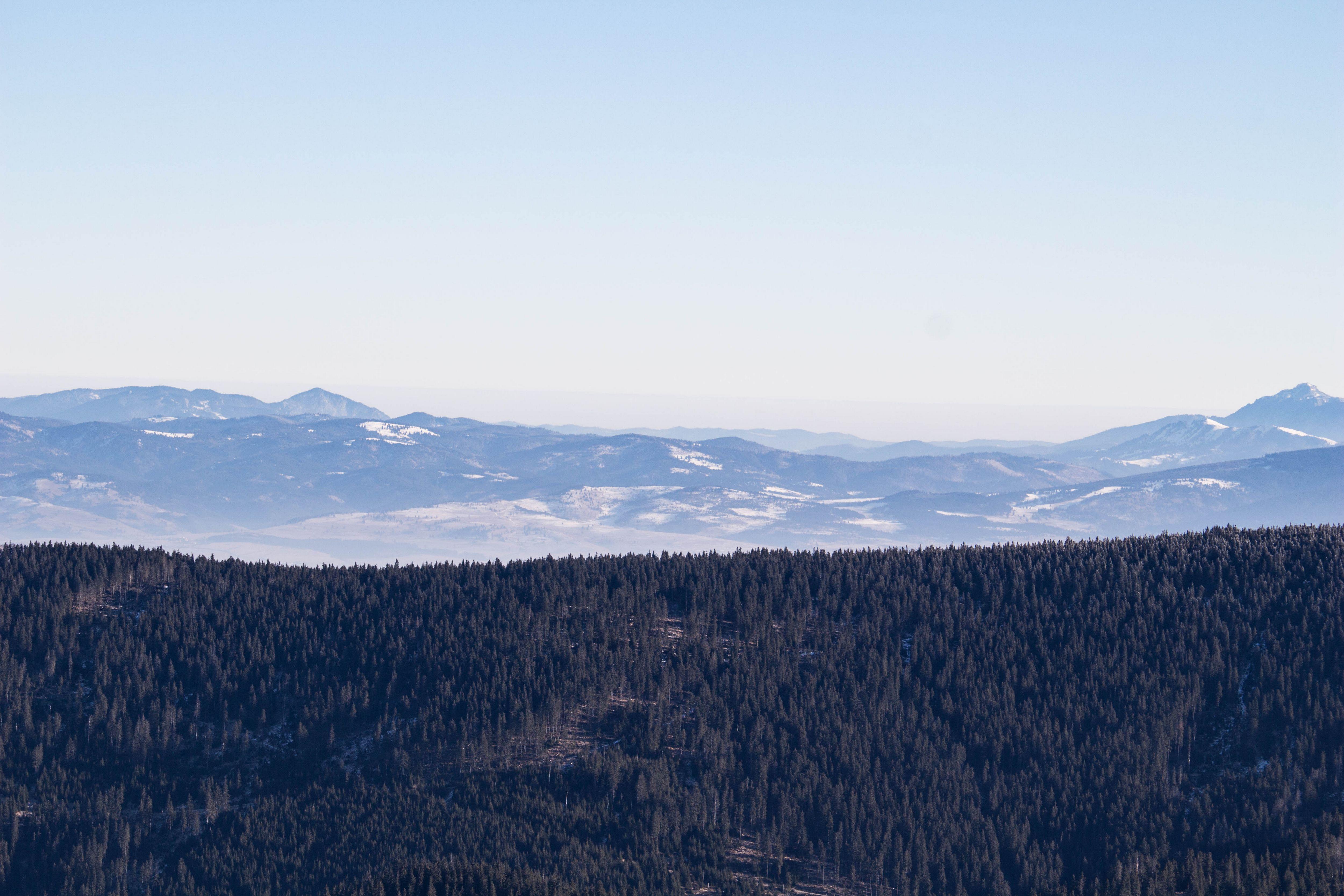 A Keleti-Kárpátok látképe a Görgényi havasokból