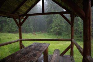 Menedék az eső elől