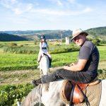 Harmónia a ló és ember között - Demény Elemér, Lófő Lovasudvar