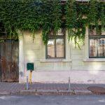 Hangulatos ház Medgyes városában