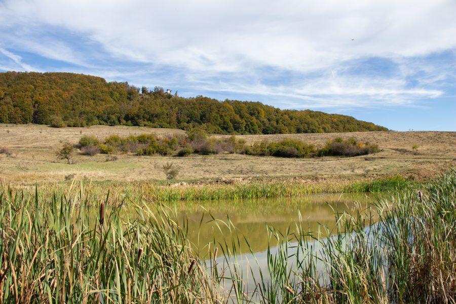 Kis tó a Bekecs aljában