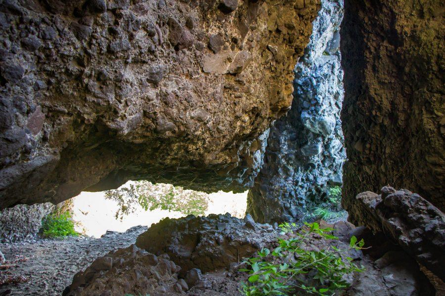 A Maros-völgyi fatörzsbarlangok szépsége