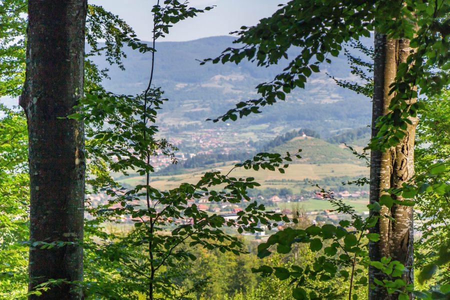 A Tyúkász Dombi kápolna Szováta erdejéből nézve