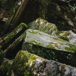 A Tündérvölgy sziklái