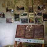 Régi fényképek Tusnádfürdőről