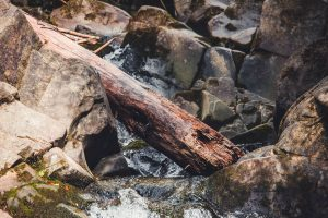 Sziklák között csordogál a patak