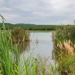 A Sepsikőröspatak és Árkos közti tó
