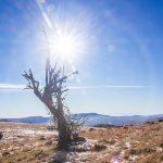 A Görgényi-havasok