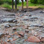Sós vizű forrás a Parajdi Sószorosban